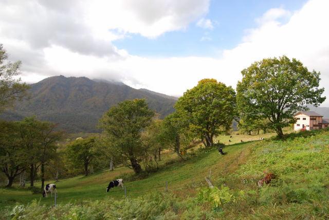 091010雨飾山・笹ヶ峰28