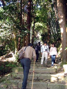 一番上が見えなくても登る:長命寺