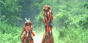 逃げる家康を追走する二騎の真田武者