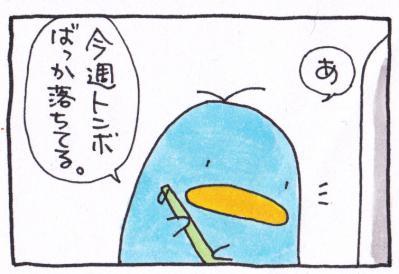 絵日記110711-2-1