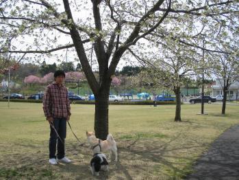 ちびもえ2011GW秋田 029