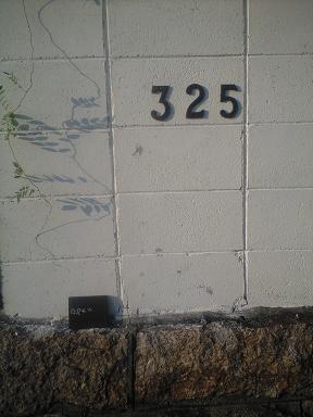 CA391233.jpg