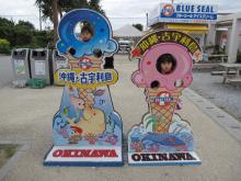 コピー ~ 沖縄旅行2012 066