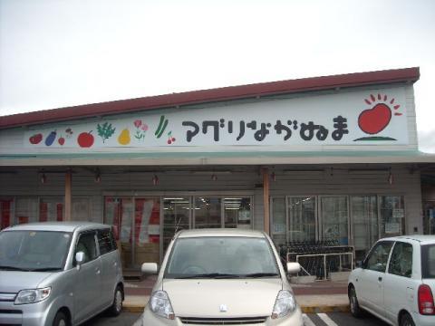 アグリ・H22・12 店