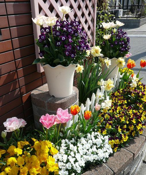 P1290676_門前花壇2