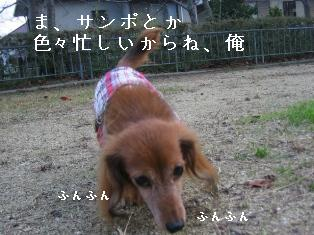 IMG_6581blog.jpg