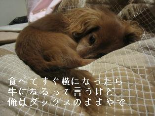 IMG_6811blog.jpg