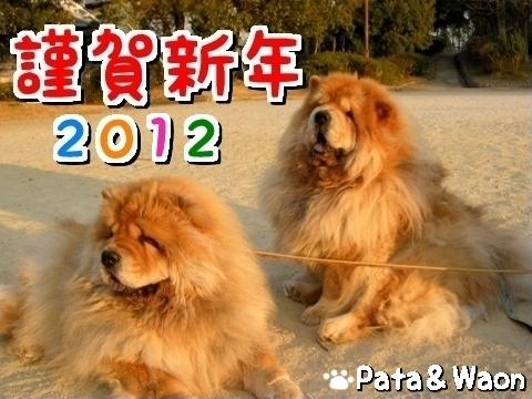 1-20120105.jpg