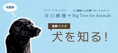 banner-inuwoshiru-400.jpg