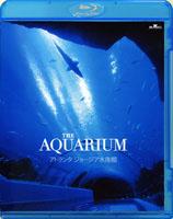 テTHE AQUARIUM アトランタ ジョージア水族館 【Blu-ray Disc】