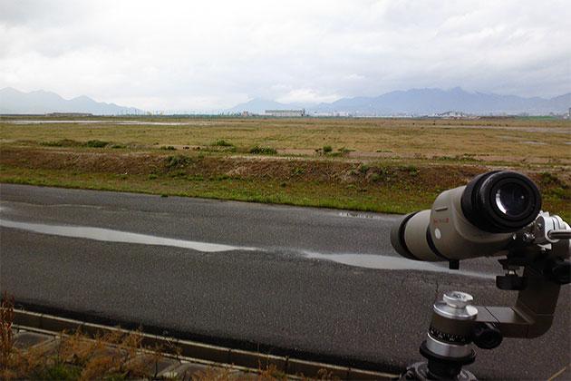 20110501yahatagawa01.jpg