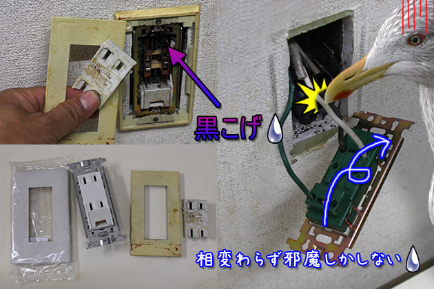20110508concent.jpg