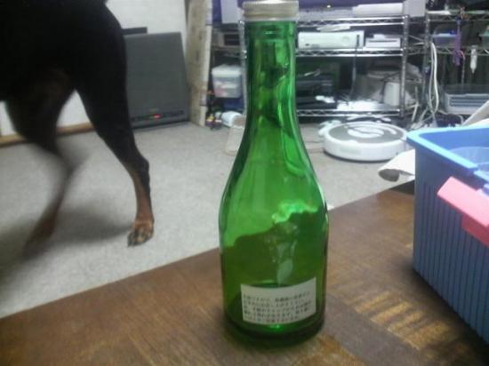 日本酒12.