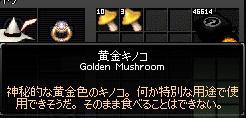 黄金キノコ