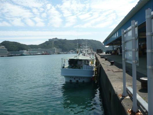 勝浦漁港(3)