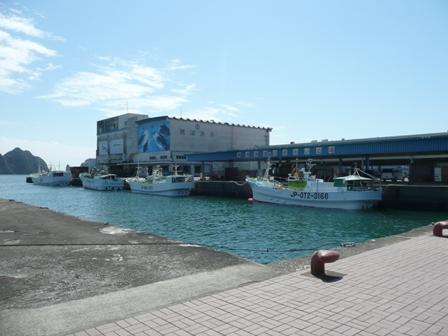 勝浦漁港(6)