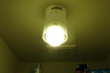 エコ電球(2)