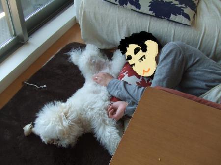 ココとボスのお昼寝。