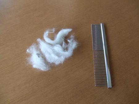 とれた毛。