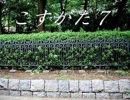 コスガタ7[09.08.29][09.08.29]ネタ2