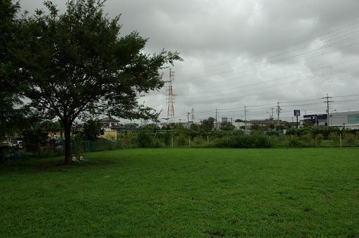 110904-09hirukawa view