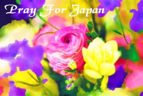 2_convert_20110320135839.jpg