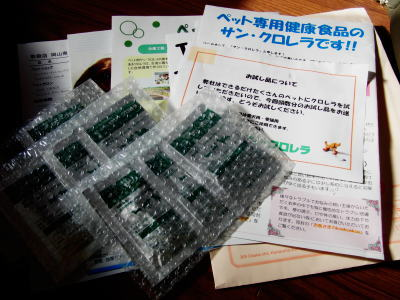 4_20110326133321.jpg