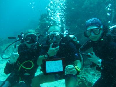200本記念、タオ島、ダイビング