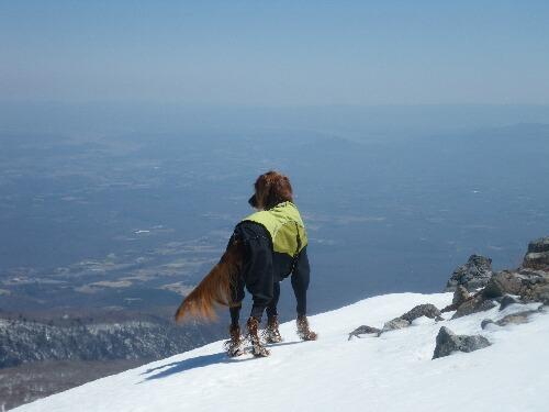 2011.04.01 茶臼岳登山ルート視察 016