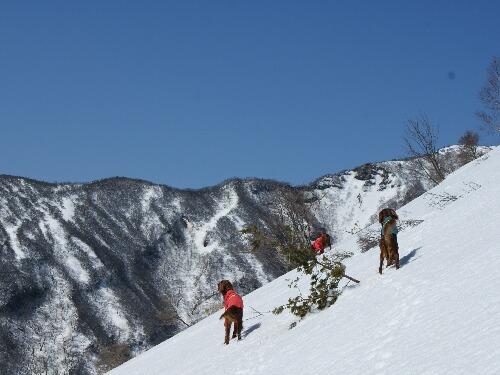 殺生石から茶臼登山ルート-7