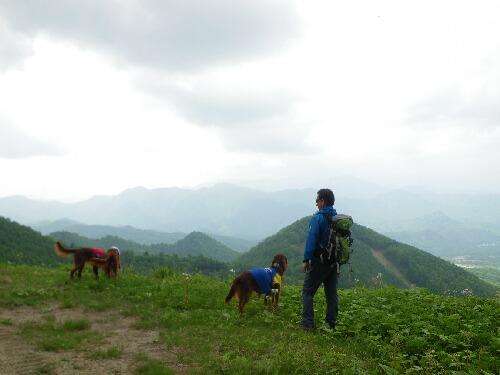 2011.05.09 七ヶ岳登山