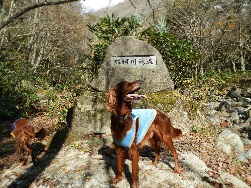 那珂川支流 石碑