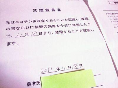seiyakusho.jpg