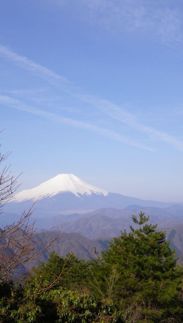 蛭ヶ岳04