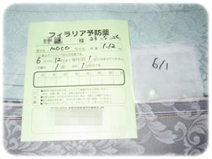 11-0526-2.jpg
