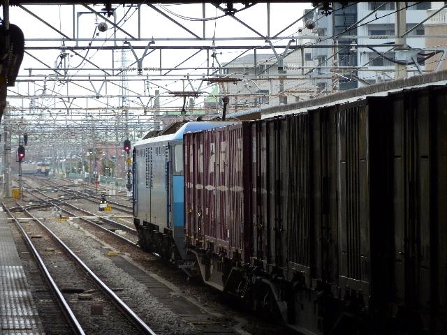 P1000651(1).jpg
