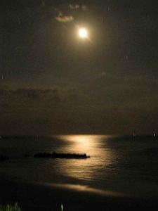 ★月の道がきれいでした★