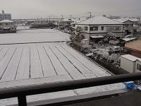 雪が積もった?日
