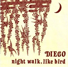 Night walk, like bird