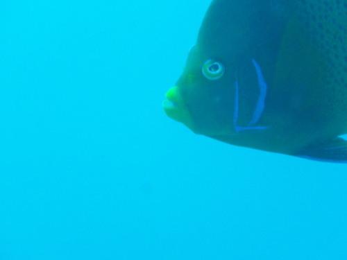 2011121403.jpg