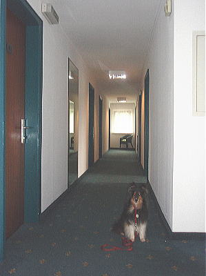20090916hotel4.jpg