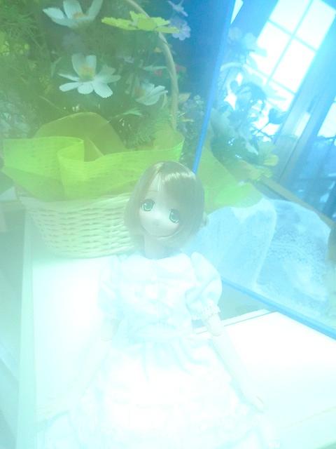 102_20111123190359.jpg