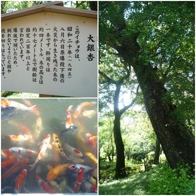 広島修学旅行52