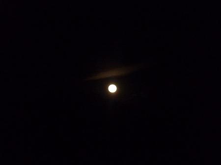 とうかえ月