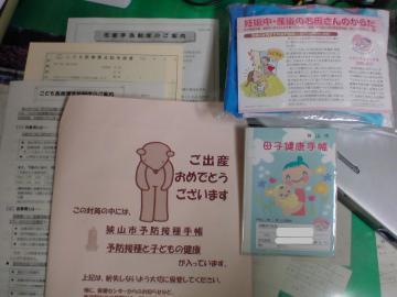 DSC00370_convert_20090727171518.jpg