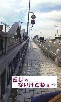 20090911-1.jpg