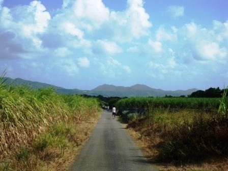 沖縄2009 071