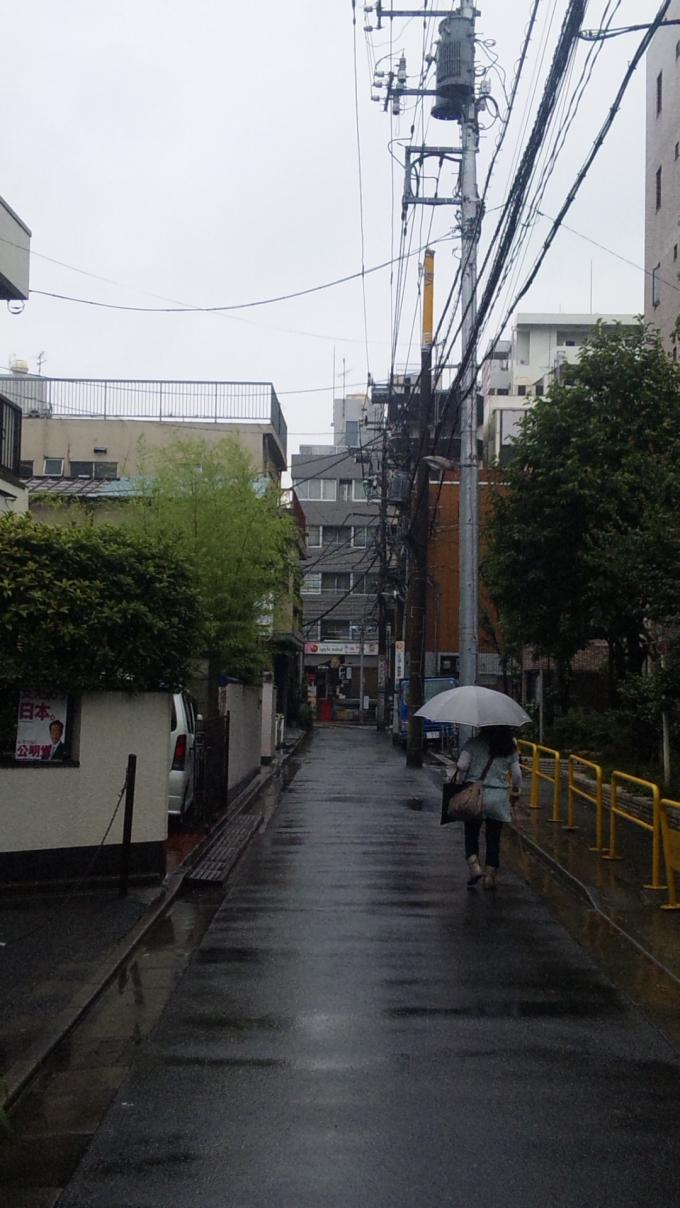 RAIN_20110611