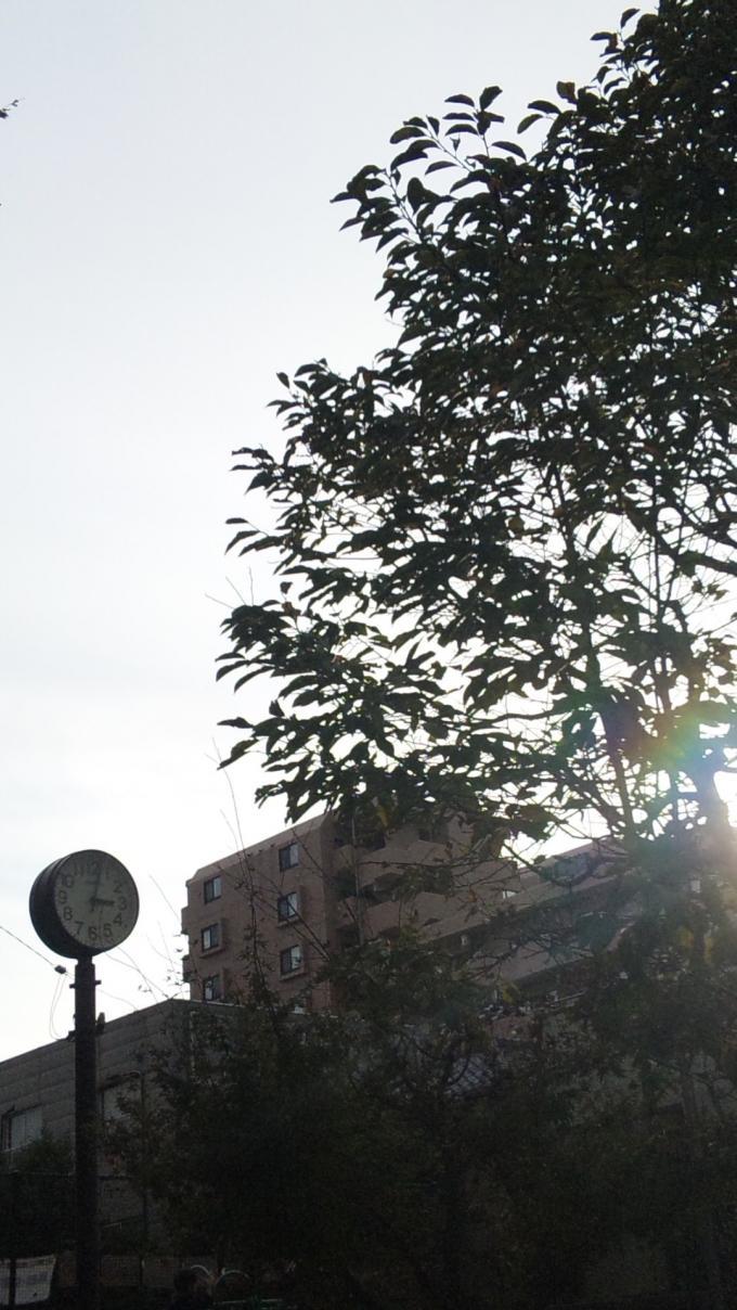 15:01_20111108