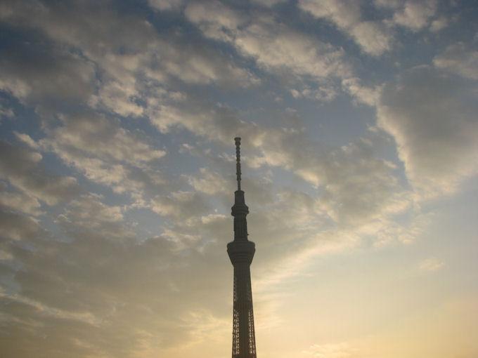 夜明けの スカイ・ツリー_20111129